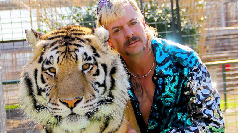 دادگاه به مالکان یک باغ وحش خصوصی در آمریکا دستور داد که ببرها را تحویل دولت دهند.